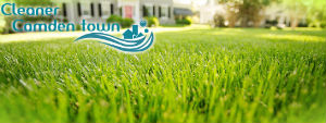 grass-cutting-services-camden-town